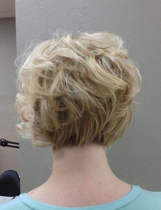 Short Haircuts For Older Women Curly Bob Haircuts Back View Women With Regard To Short Hairstyles For Work (View 14 of 20)