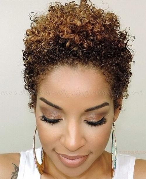 Short Hairstyles For Natural Curly Hair – Short Hairstyle For Within Short Haircuts For Naturally Curly Hair (View 10 of 20)