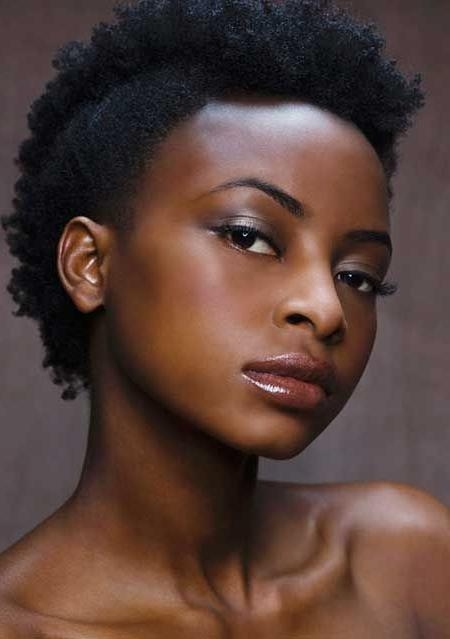 Short Hairstyles: Natural Short Hairstyles For Black Hair African For Short Haircuts For Natural African American Hair (View 19 of 20)