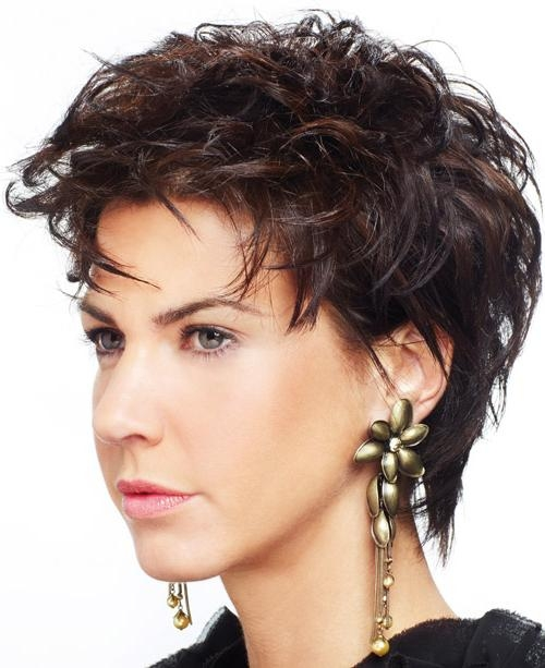Short Hairstyles: Tips Ideas Short Hairstyles For Curly Hair And For Short Haircuts For Round Faces With Curly Hair (View 18 of 20)
