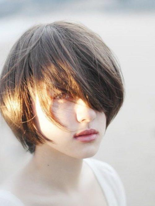 14+ Short Korean Hairstyles 2017 – Goostyles Inside Short Korean Hairstyles (View 3 of 20)