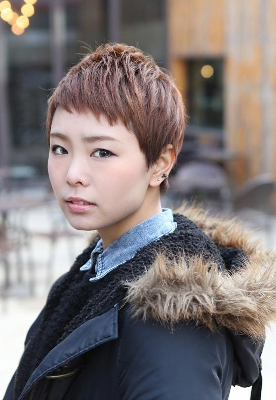 Cute Short Layered Boyish Hairstyle – Asian Brown Short Haircut Pertaining To Very Short Asian Hairstyles (View 14 of 20)