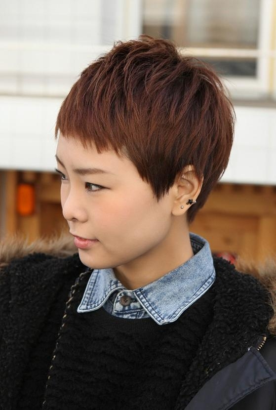 Short Boyish Asian Hairstyle For Women – Brown Pixie Cut With Throughout Very Short Asian Hairstyles (View 17 of 20)