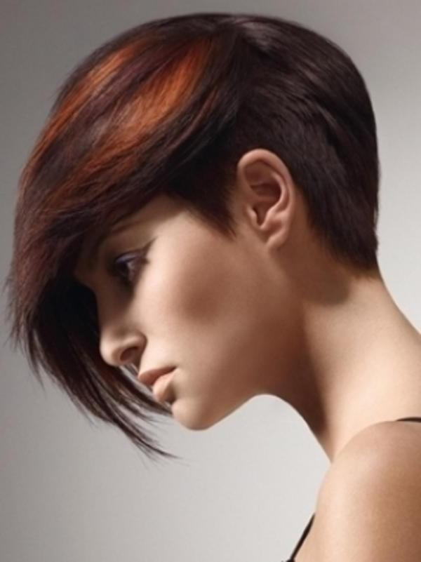 15 Trendy Long Pixie Hairstyles For Popular Long Hair Pixie Haircuts (View 2 of 20)