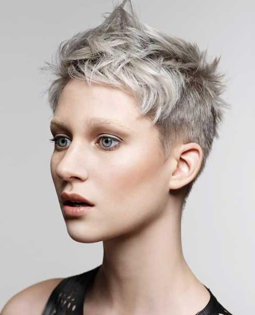 Featured Photo of Grey Pixie Haircuts
