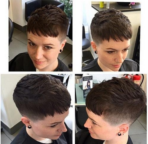 2017 Buzzed Pixie Haircuts Pertaining To Top 18 Short Hairstyle Ideas – Popular Haircuts (View 2 of 20)