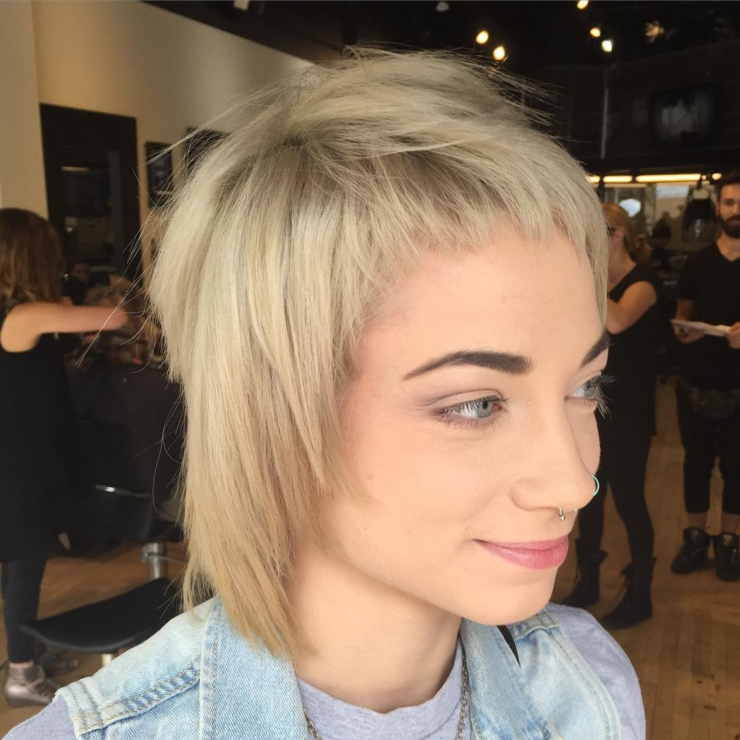 Current Short Shaggy Hairstyles For Grey Hair With Regard To 20+ Best Short Shag Haircut Ideas, Designs (View 5 of 15)