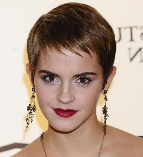 Famous Pixie Haircuts For Thin Hair With Regard To Lovely Pixie Haircut For Thin Hair (View 5 of 20)