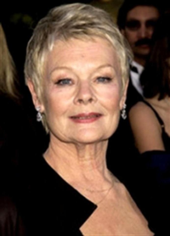 Photo Gallery of Judi Dench Pixie Haircuts (Viewing 17 of 20 Photos)