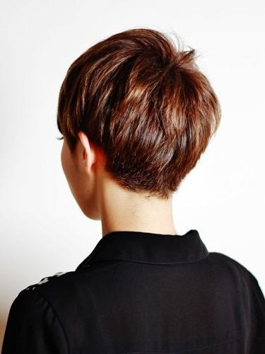 Haircuts, Pixies And Short Hair Pertaining To Most Popular Back Views Of Pixie Haircuts (View 3 of 20)