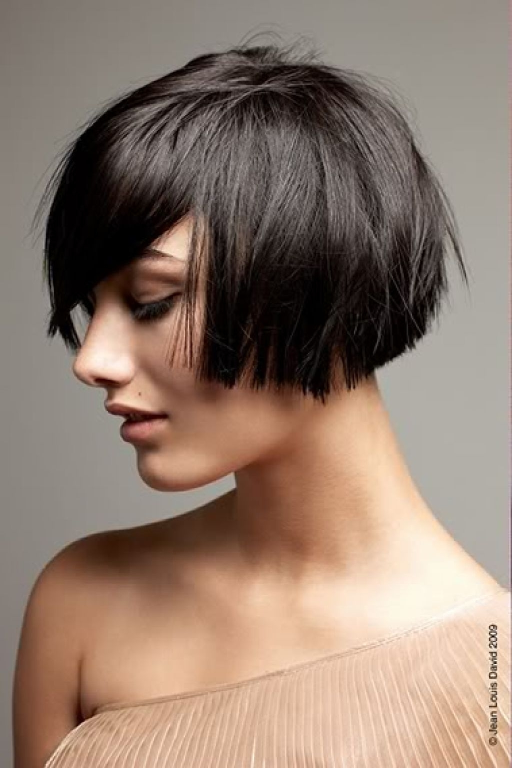 Jaw Length Shaggy Bob Haircut – Google Search (View 6 of 15)