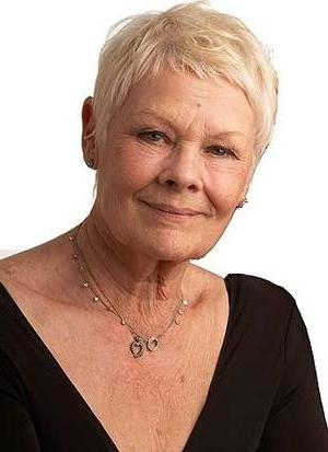 Judi Dench, Grey Hair (View 14 of 20)