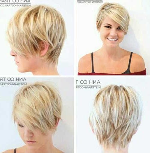 Long Pixie Hair Throughout Most Up To Date Pixie Haircuts Front And Back (View 16 of 20)