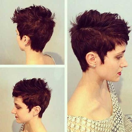 Most Popular Pixie Haircuts Colors Within Best 25+ Pixie Cut Color Ideas On Pinterest (View 14 of 20)
