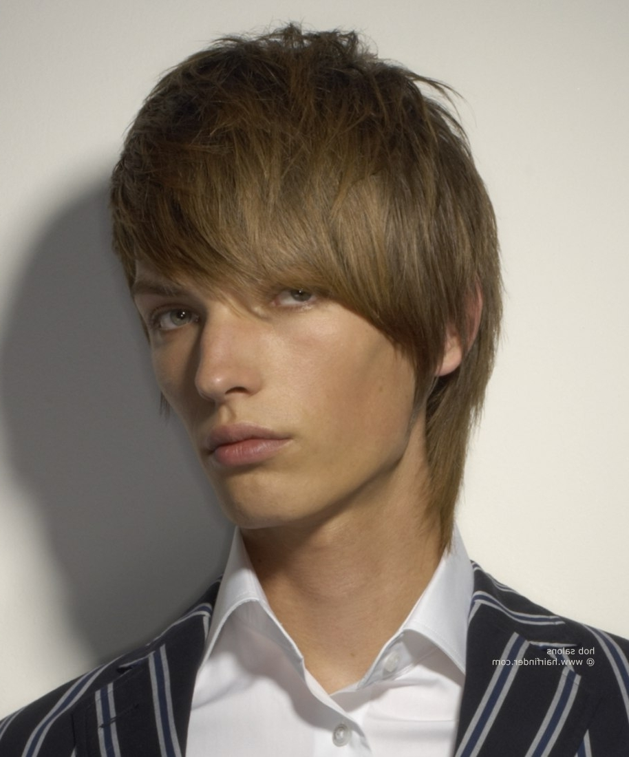 Most Recent Men's Shaggy Hairstyles Pertaining To Men's Shag Hairstyle That Covers The Ears And Neckline (View 13 of 15)
