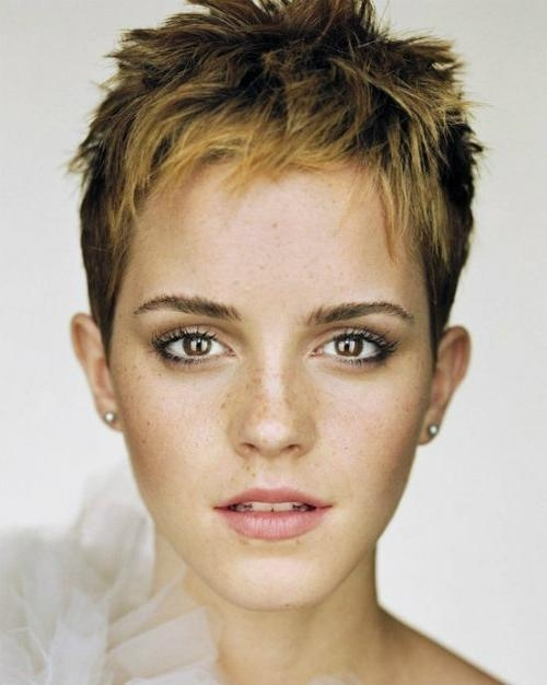 Most Recently Released Pixie Haircuts For Oval Face Shape Within Fierce Pixie Hairstyles That Fit For Any Girl's Oval Faces (View 10 of 20)