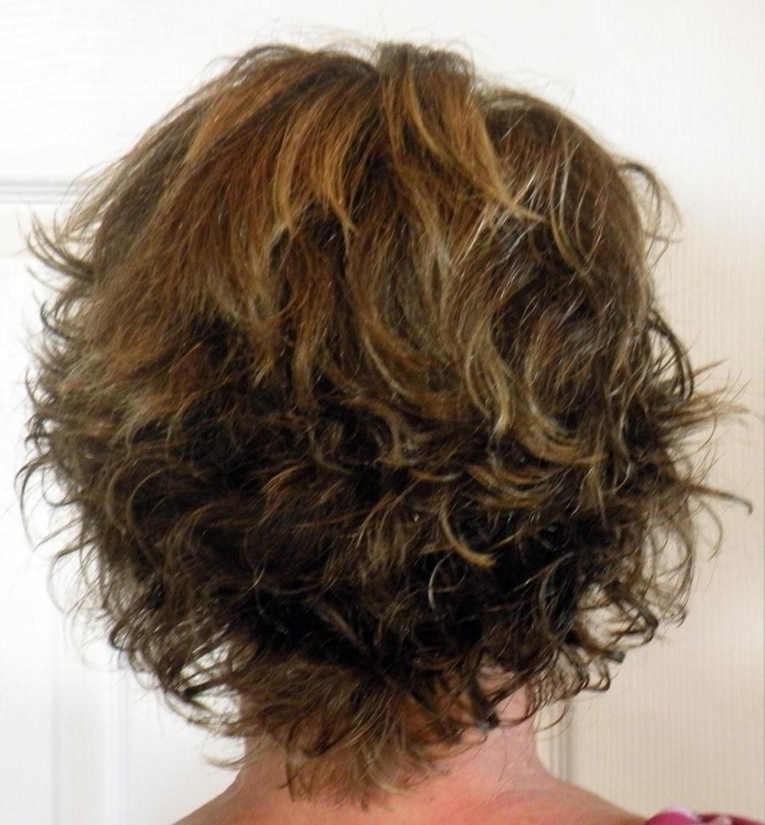 Most Recently Released Short Curly Shaggy Hairstyles Throughout Short Layered Haircuts Back View (View 7 of 15)