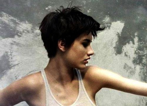 Popular Pixie Haircuts For Women With Thick Hair Regarding Best 25+ Pixie Haircut For Thick Hair Wavy Ideas On Pinterest (View 18 of 20)
