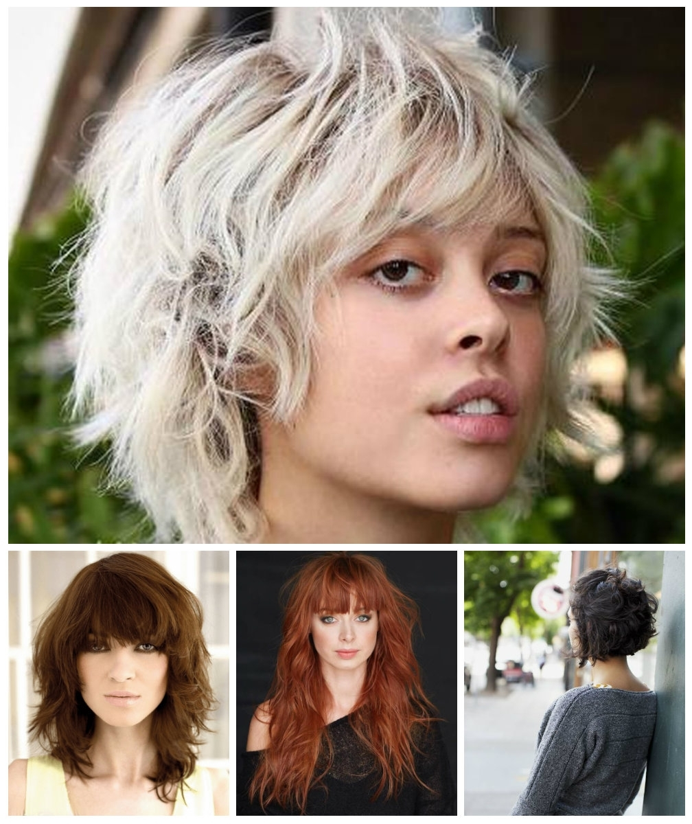 Popular Shaggy Crop Hairstyles Pertaining To Curly Shag Haircuts For Short, Medium And Long Hair – New (View 9 of 15)