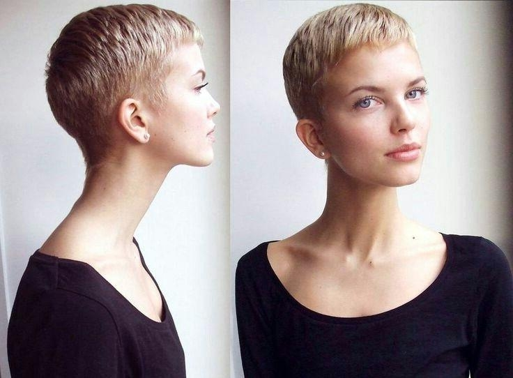20 Inspirations Of Buzzed Pixie Haircuts