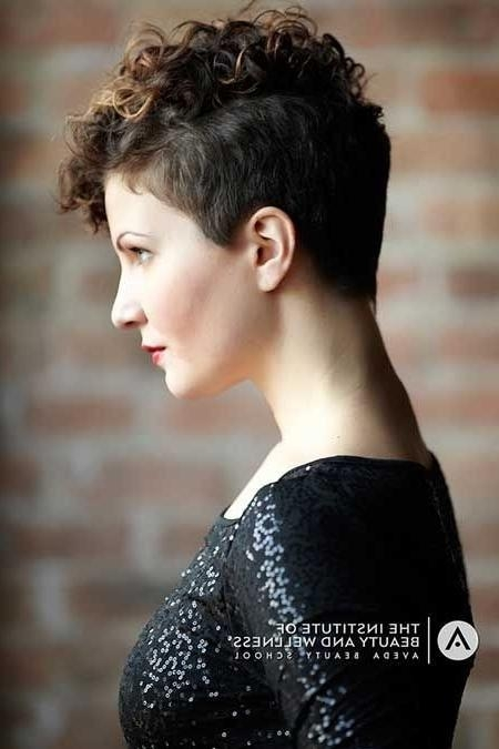 Recent Pixie Haircuts With Curly Hair Throughout Curly Pixie Haircut – Braiding Hairstyle Pictures (View 16 of 20)