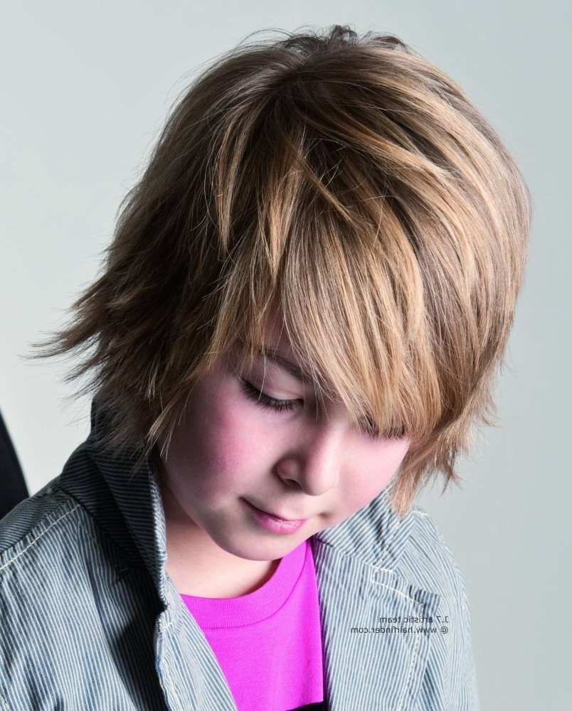 Shag Hairstyle For Young Boys Regarding Most Current Salon Shaggy Hairstyles (View 12 of 15)