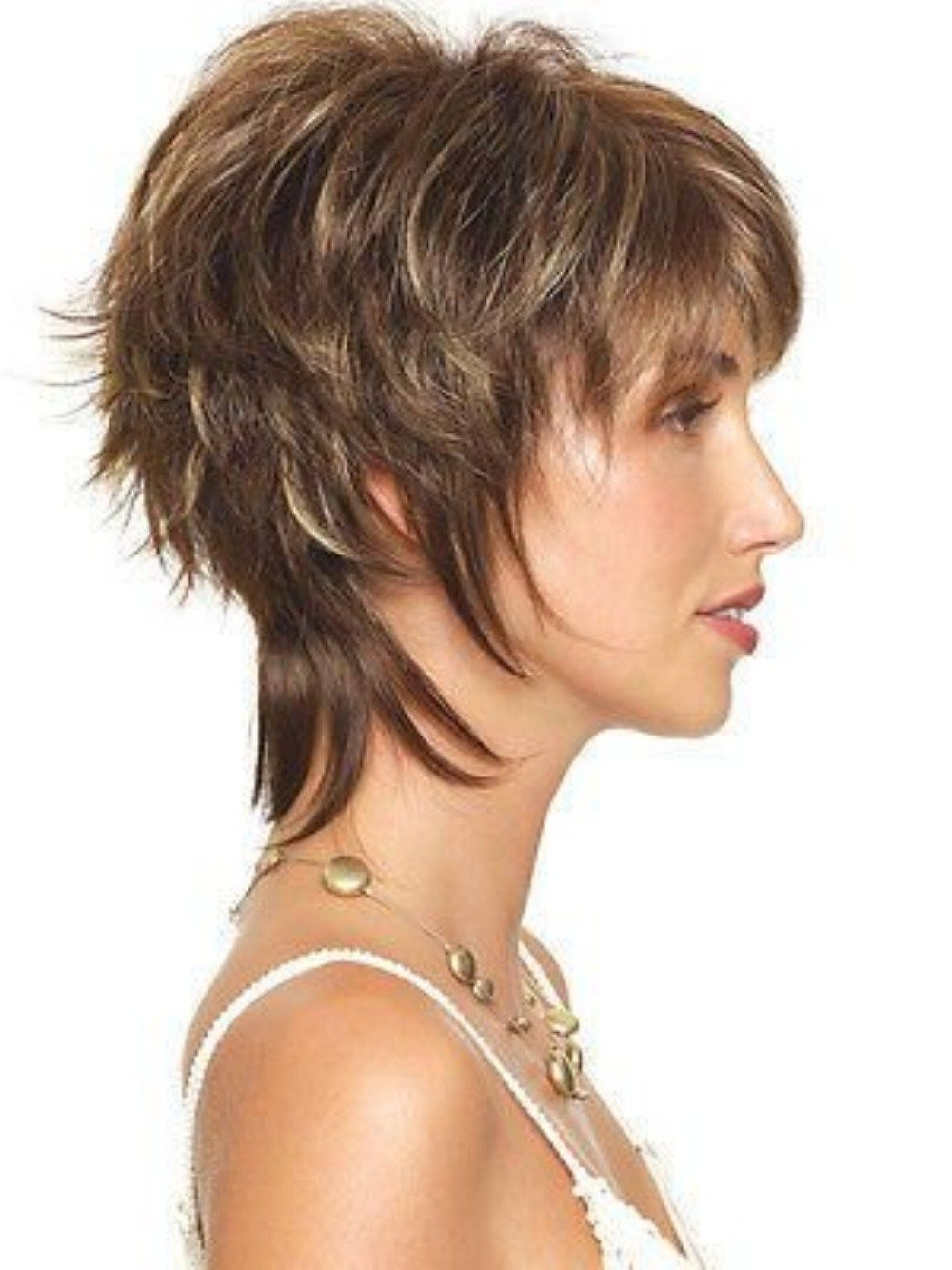 Shag Hairstyles Regarding Current Shaggy Brown Hairstyles (View 10 of 15)