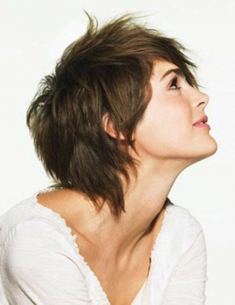 Shaggy Hair Salon Archives – Hairstyles And Haircuts In 2018 Regarding Well Known Shaggy Salon Hairstyles (View 10 of 15)