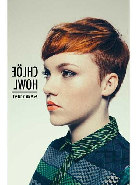 Short Hairstyles 2016 –  (View 13 of 20)