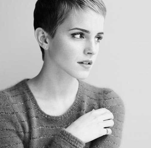 Short Hairstyles 2016 In 2018 Short Straight Pixie Haircuts (View 17 of 20)