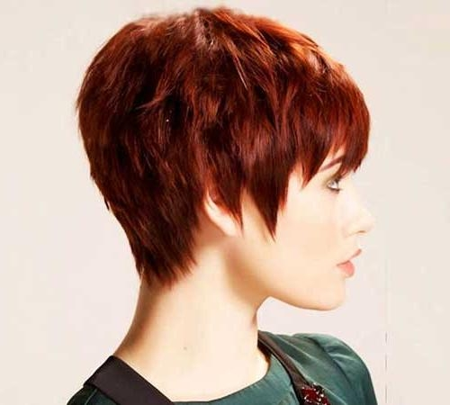 Short Hairstyles 2016 With Regard To Most Recently Released Pixie Haircuts For Thick Straight Hair (View 18 of 20)