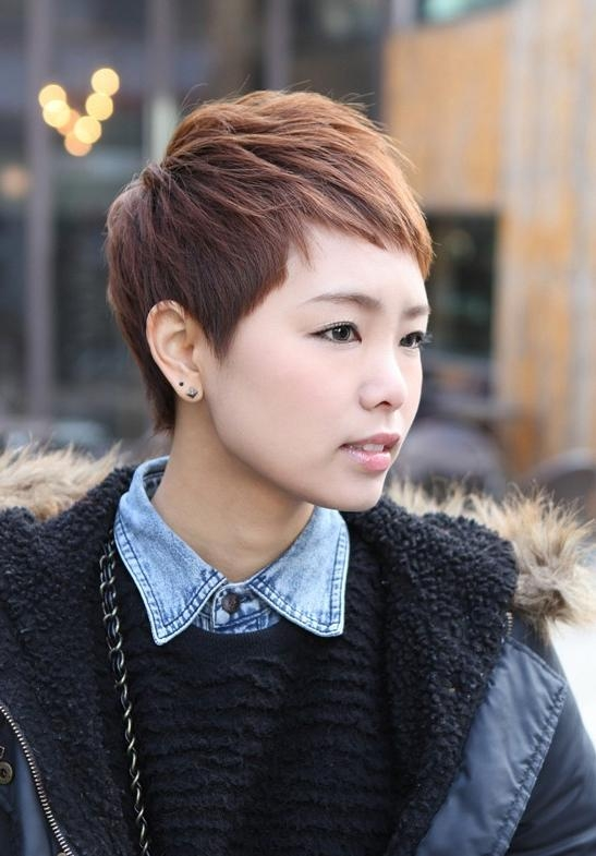 Short Layered Boyish Hairstyle – 2013 Brown Pixie Cut For Women Within Fashionable Japanese Pixie Haircuts (View 15 of 20)