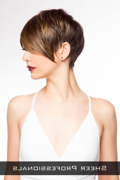 The 27 Ultimate Short Hairstyles For Long Faces Regarding Well Known Pixie Haircuts For Long Face (View 19 of 20)