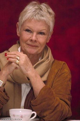 Trendy Judi Dench Pixie Haircuts For 12 Best Hair For Dita Images On Pinterest (View 20 of 20)