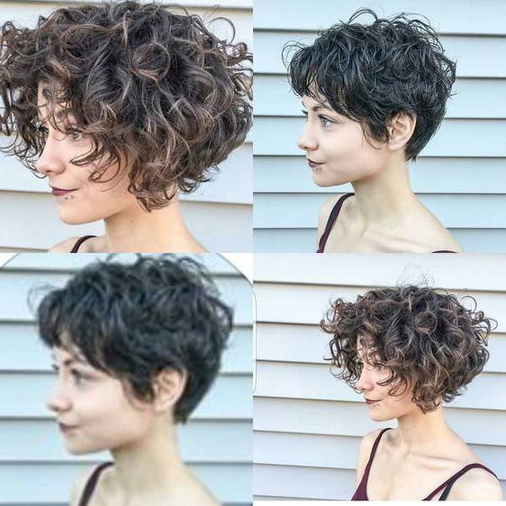 Trendy Short Pixie Haircuts For Curly Hair Inside 20+ Must See Short Curly Hair Ideas You Will Love – Fashion Daily (View 18 of 20)