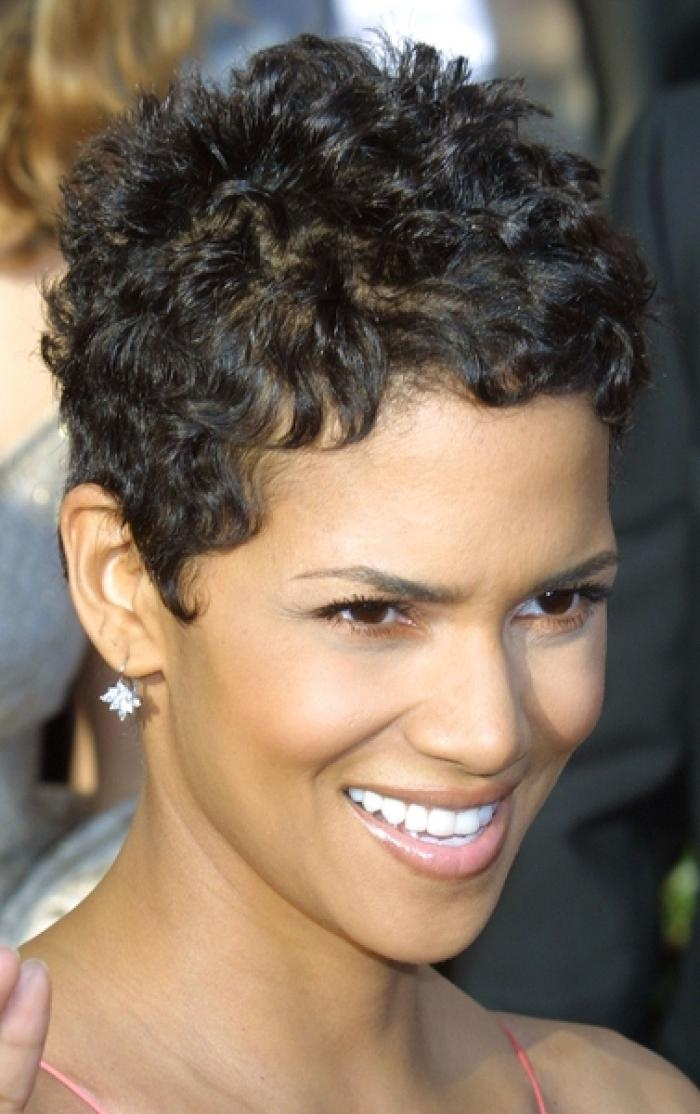 haircuts for frizzy curly hair 20 collection of pixie haircuts for curly hair 1051