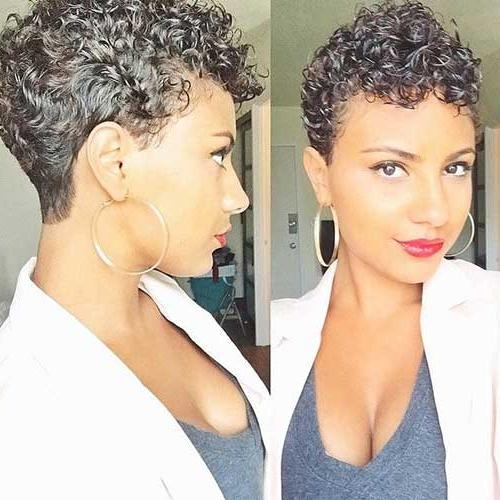 Widely Used Naturally Curly Pixie Haircuts Throughout 20 Good Pixie Haircuts For Curly Hair (View 20 of 20)