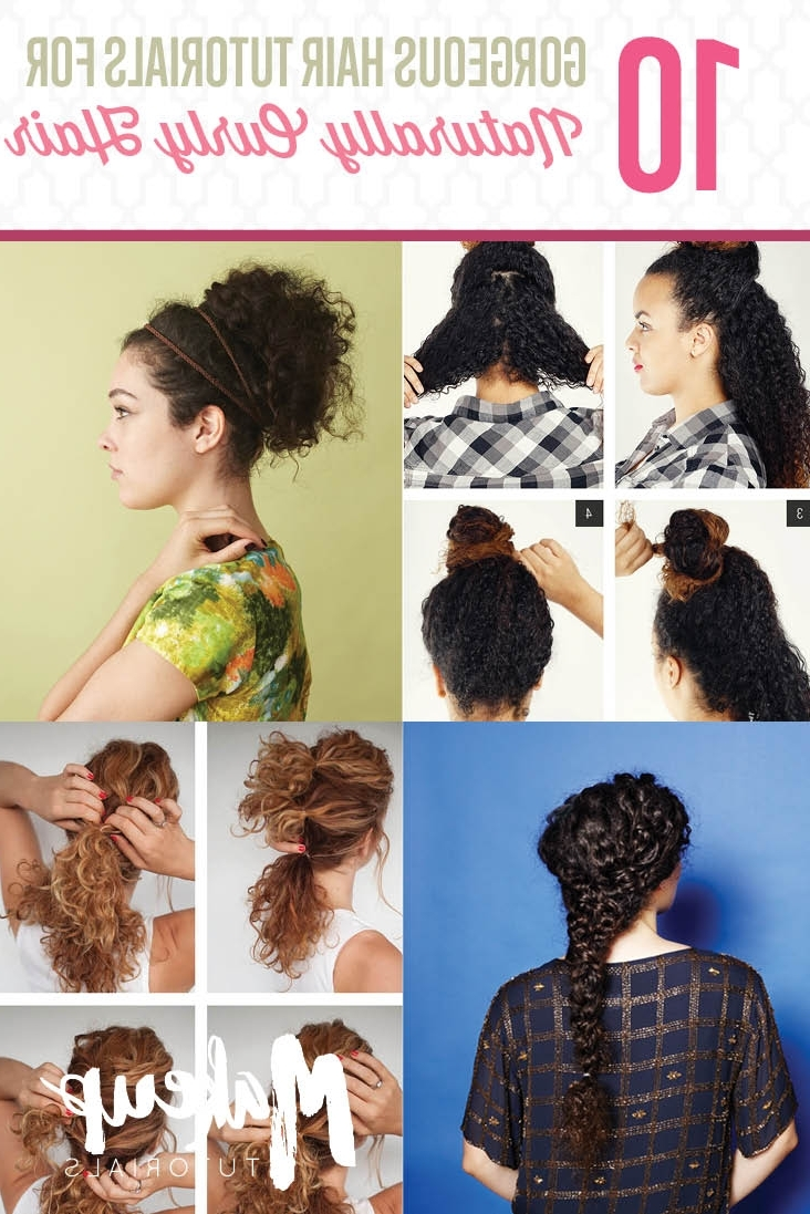 10 Easy Hairstyle Tutorials For Naturally Curly Hair In Easy Updo Hairstyles For Curly Hair (View 1 of 15)