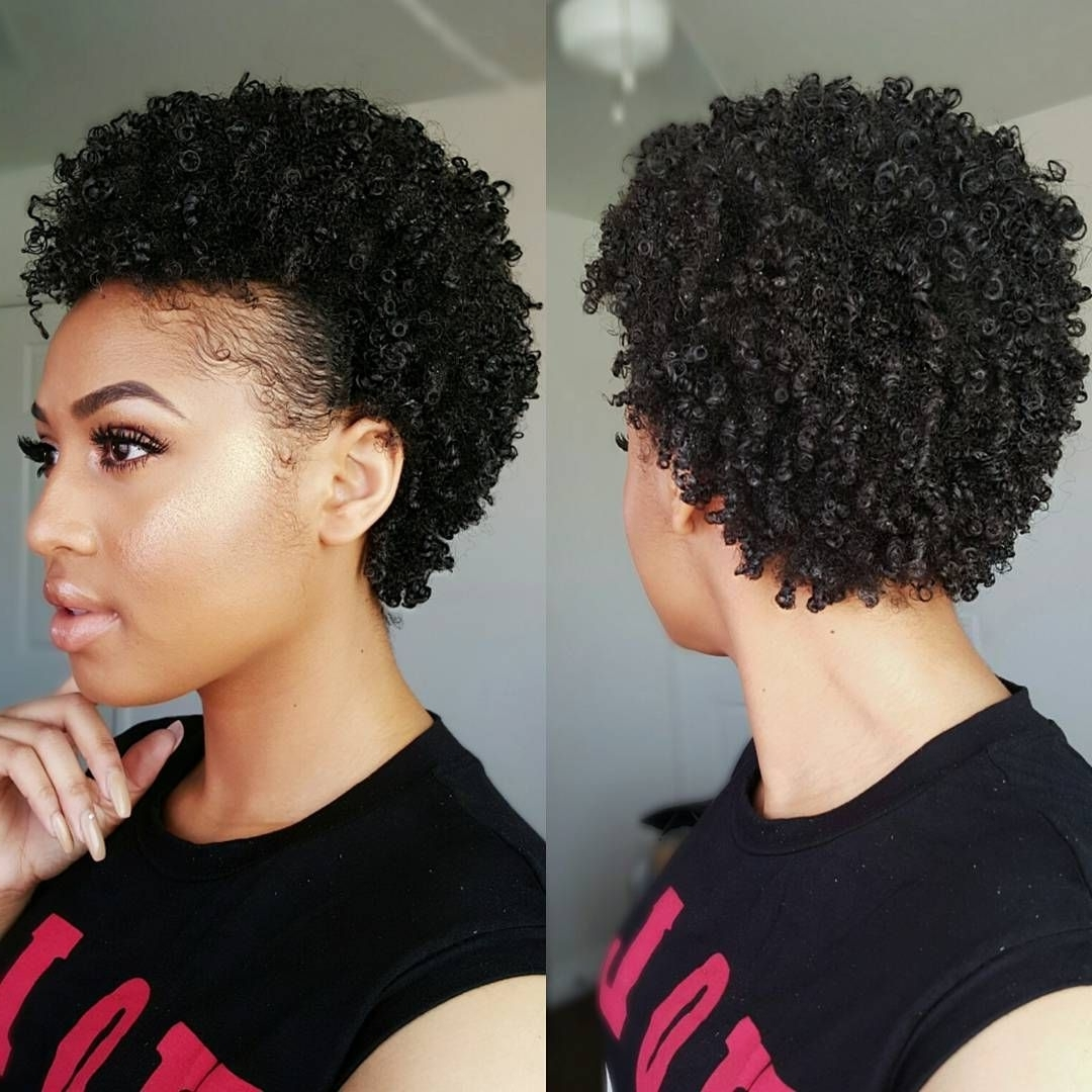 75 Most Inspiring Natural Hairstyles For Short Hair | Shorts In Natural Hair Updos For Short Hair (View 2 of 15)