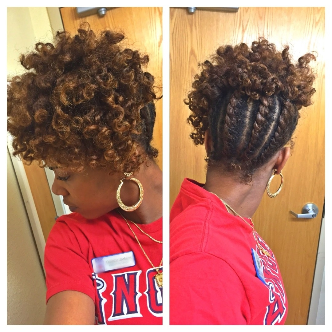 Black Hair Twist Updo Hairstyles Twist Hairstyles For Natural Hair Pertaining To Natural Updo Hairstyles For Black Hair (View 2 of 15)