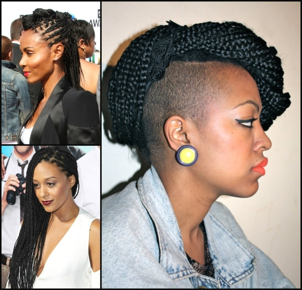 Photo Gallery Of Box Braids Updo Hairstyles Viewing 11 Of 15 Photos