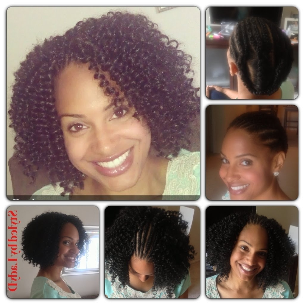 Crochet Braids Protective Hairstyle – Freetress Waterwave In Crochet Braid Pattern For Updo Hairstyles (View 4 of 15)