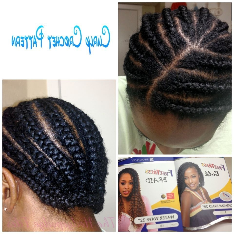Curly Crochet Braids With Freetress Bohemian/waterwave Hair Throughout Crochet Braid Pattern For Updo Hairstyles (View 8 of 15)
