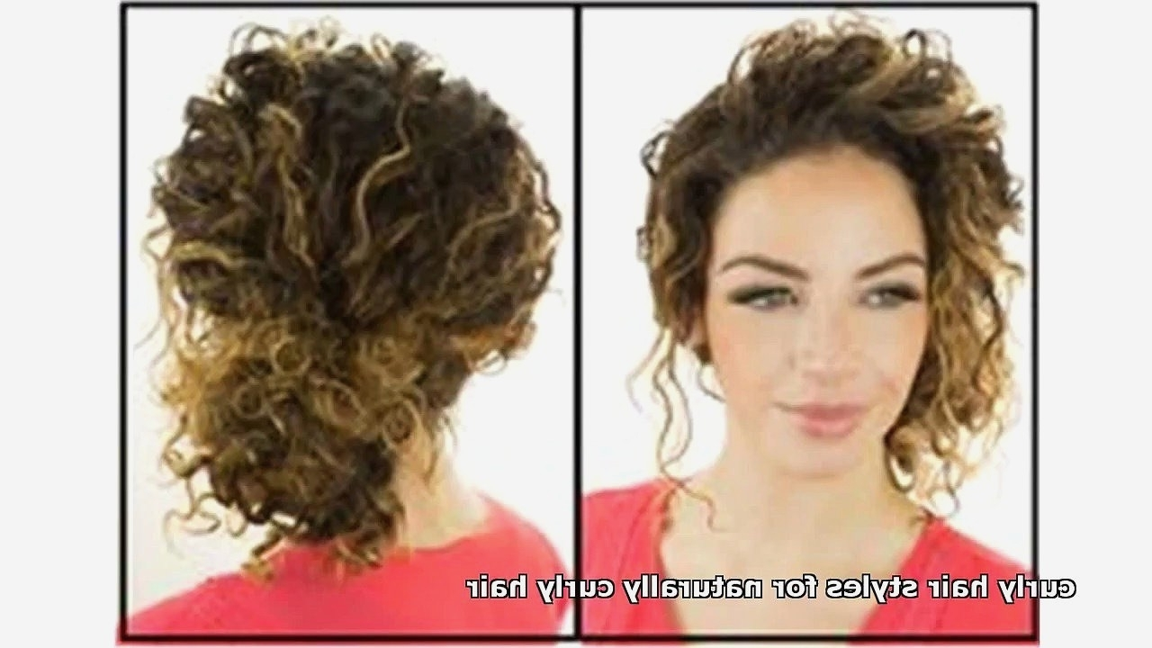 Curly Hairstyles : Awesome Naturally Curly Updo Hairstyles Within Updo Naturally Curly Hairstyles (View 8 of 15)