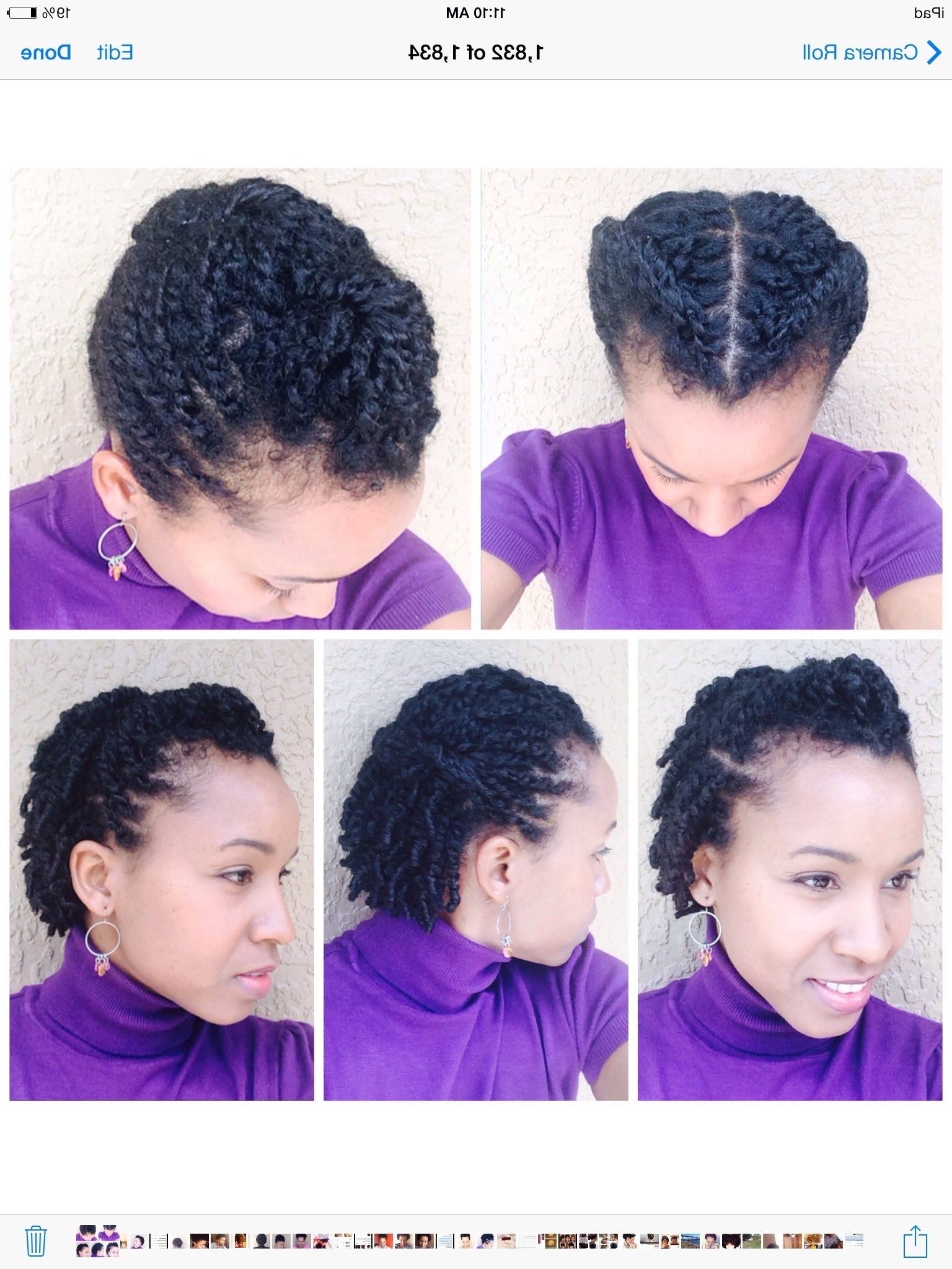 Photo Gallery Of Two Strand Twist Updo Hairstyles For Natural Hair