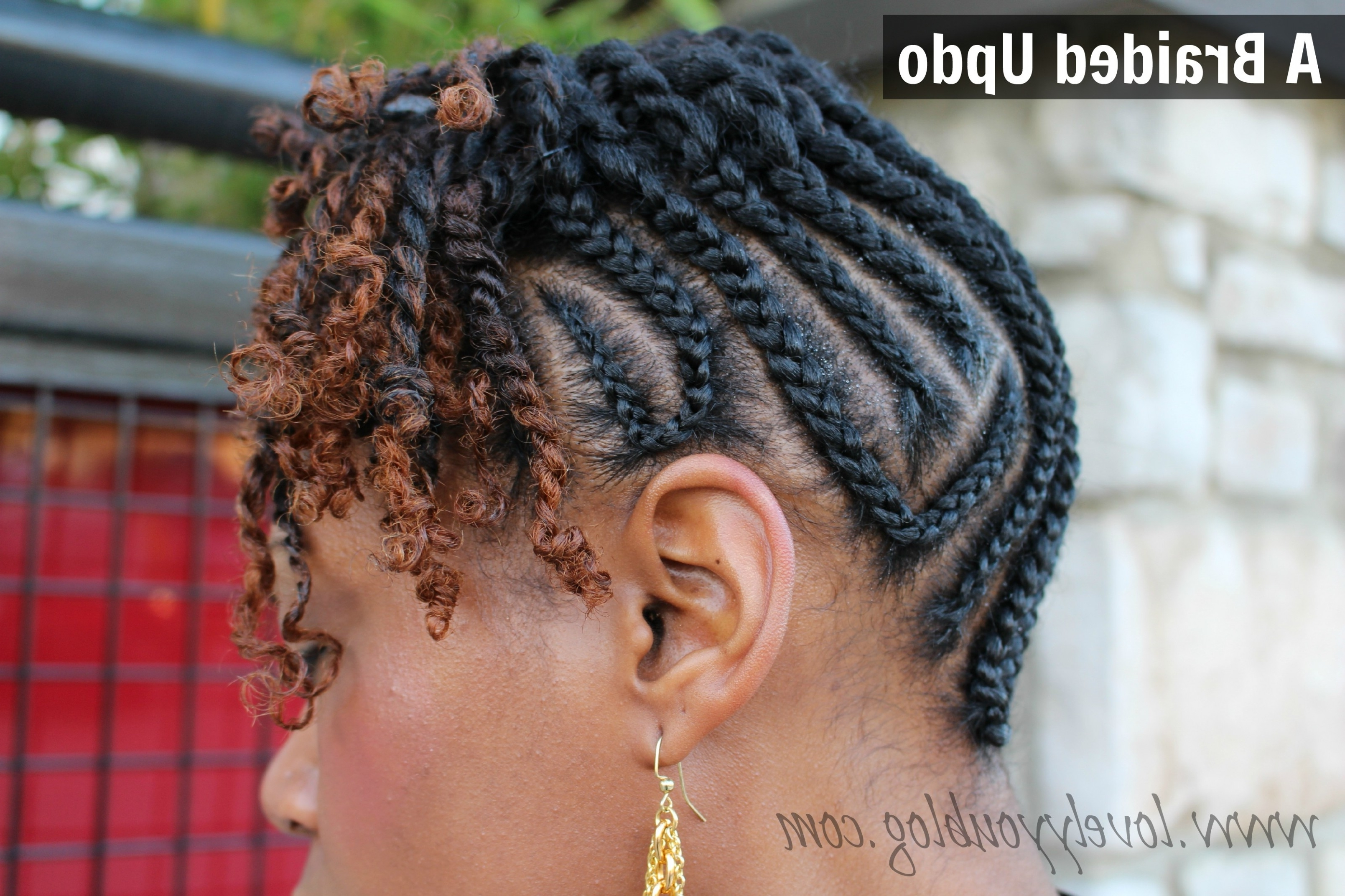 Natural Hair – Braid Updo With Twists Lunch Date Twitter Link . (View 9 of 15)