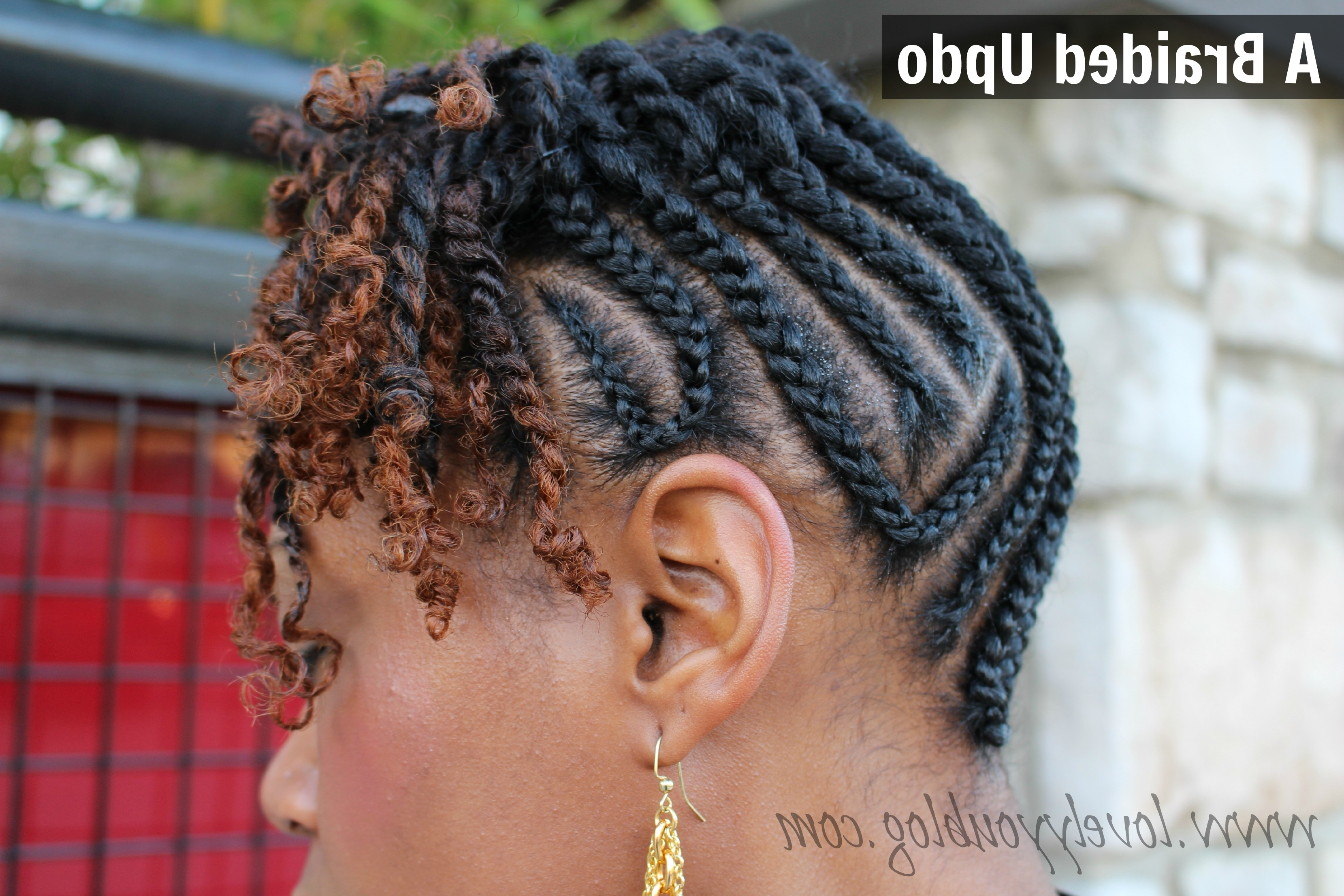 Natural Hair – Braid Updo With Twists + Lunch Date + Twitter Link Up For Twisted Updo Natural Hairstyles (View 6 of 15)