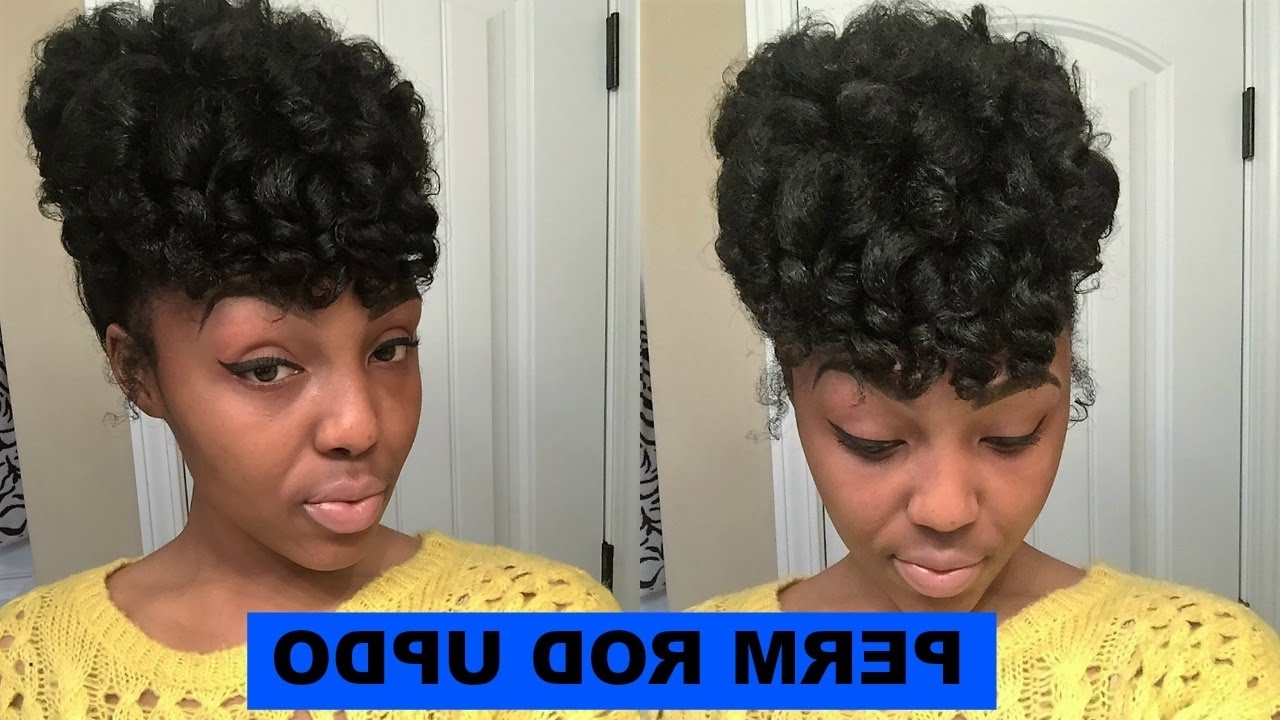 Perm Rod Updo On Natural Hair – Youtube In Updo Hairstyles For Permed Hair (View 8 of 15)