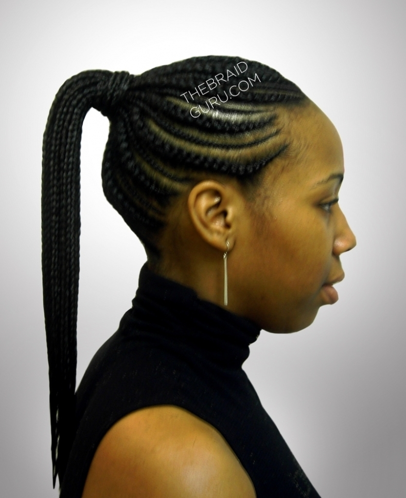 Ponytail Hairstyles Braid Gallery The Braid Guru In Cornrow Updo Ponytail Hairstyles (View 12 of 15)