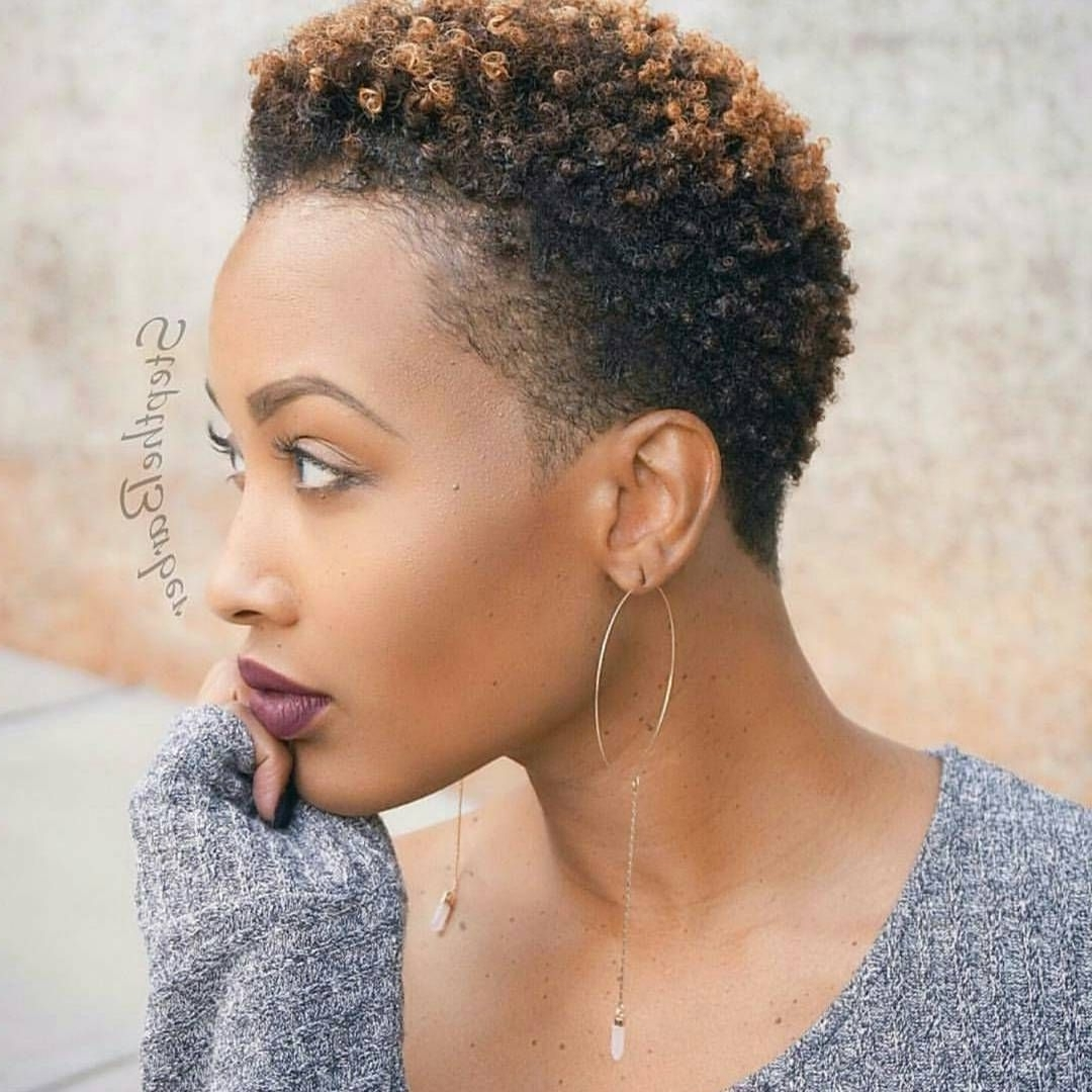 See 17 Hot Tapered Short Natural Hairstyles   Teeny Weeny Afros With Natural Hair Updos For Short Hair (View 13 of 15)